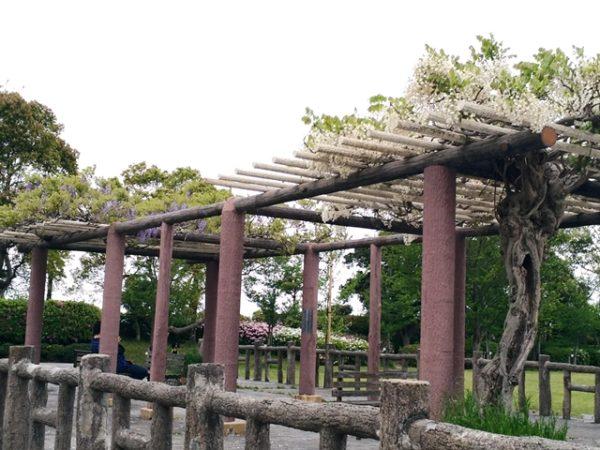 米子 散策 米子城跡