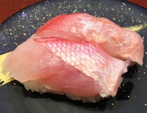 米子市で絶対に行くべき回転寿司3選!
